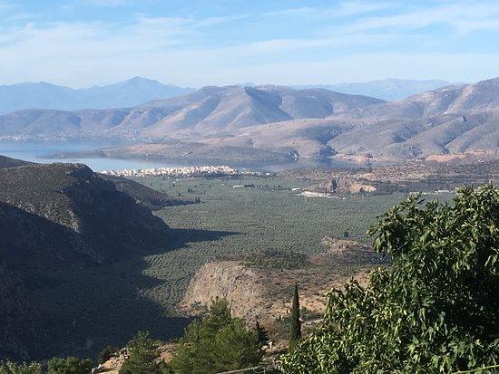 Amalia Hotel Delphi: View from Hotel Balcony ( not the room)