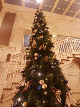 Disney's Newport Bay Club Photo