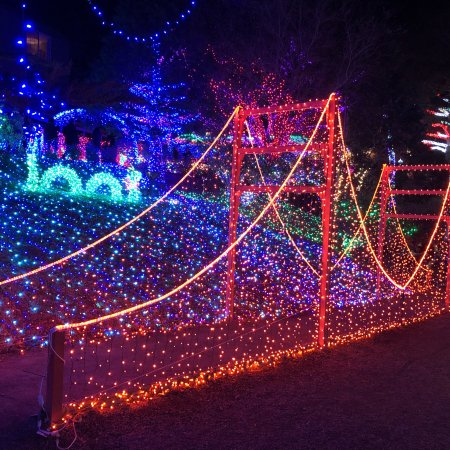 Cambria Christmas Market Light Festival Picture Of