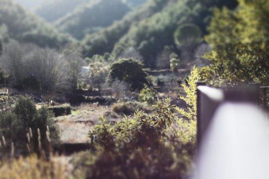 Ain, إسبانيا: Las vistas