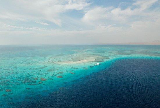 Plaza Safari Excursions: White Island, Ras Muhammad,  (the magic)