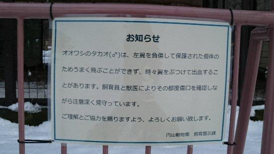 Maruyama Zoo Image