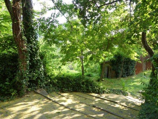 Corte D'Aibo: Gardens