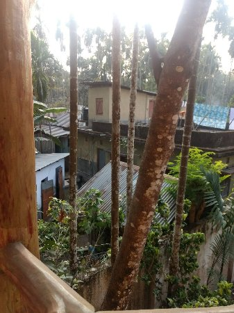 Priti Forest Resort Picture