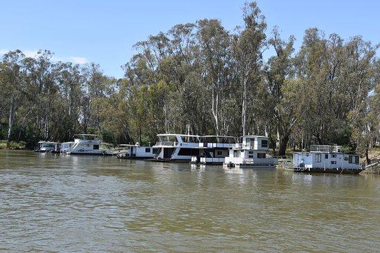 Cobba Paddleboat: House boats along the river
