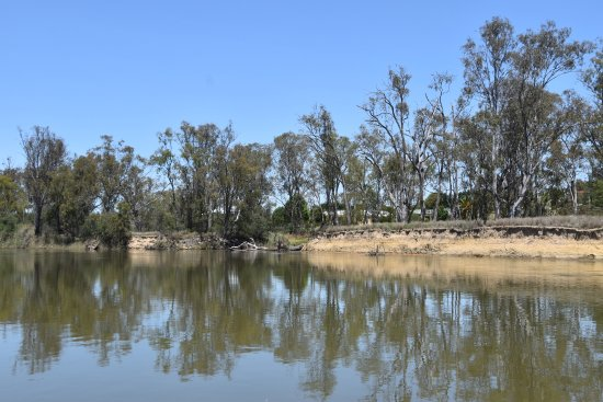 Cobba Paddleboat : Serene river scenes