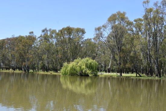 Cobba Paddleboat: Scerene river scenes