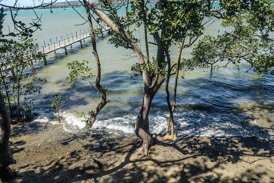 Barracuda Resort: pier lindissimo