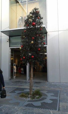 NEGOZIO KARTELL... - Bild von Scalo Milano Outlet & More ...