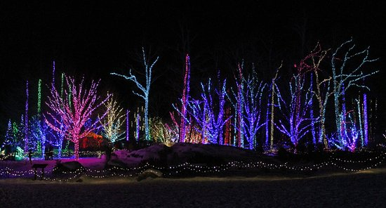 Coastal Maine Botanical Gardens Photo