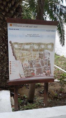 George Sebastian Villa: le plan du site