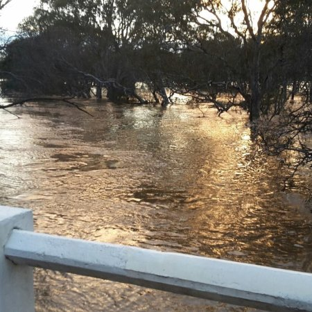 ‪‪Cavendish‬, أستراليا: Wannon River‬