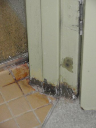Ibis Budget Perth Airport: Bathroom