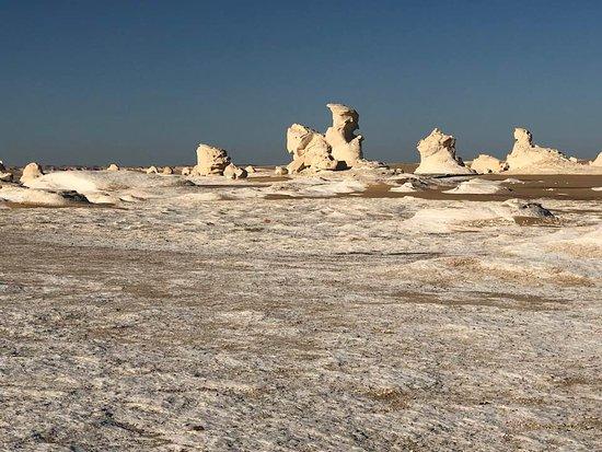 Egypt Western Desert Tours - Day Tour: the white desert