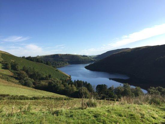 Llanbrynmair, UK: Llyn Clywedog is a five minute walk away