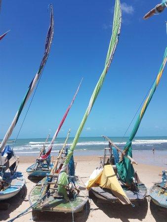 Praia da Taiba: 20171218_115932_large.jpg