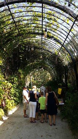 McKee Botanical Garden: Entry Pergola