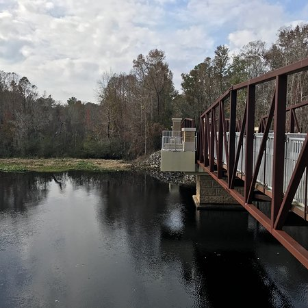 Blue Run of Dunnellon Park