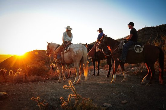 Cave Creek, AZ: CCT offers THE best sunset rides in Phoenix, Arizona!