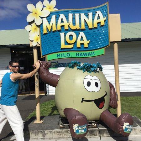 Кио, Гавайи: Mauna Loa