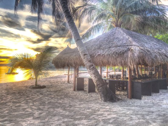 Foto de Cove Paradise Beach & Dive Resort