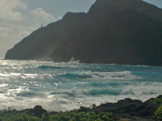 Makapu'u Beach: C:\Data\Users\Public\Pictures\Saved Pictures\WP_000705_large.jpg