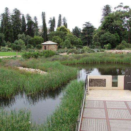 Billede af adelaide botanic garden adelaide for Landscape gardeners adelaide