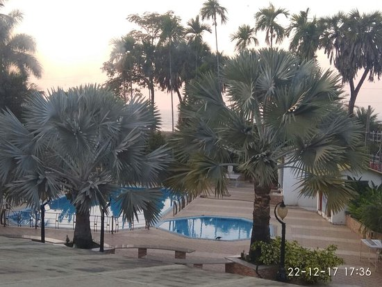 Sandy Resort: Its not clear int he snap, but beyond those palm trees is sea front