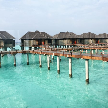 The Sun Siyam Iru Fushi Maldives: photo0.jpg