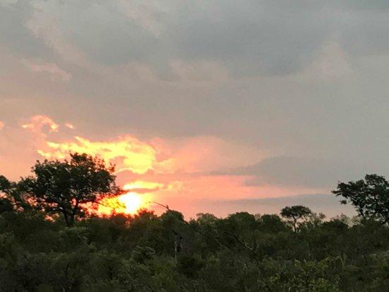 Simbambili Game Lodge: Beautiful sunsets
