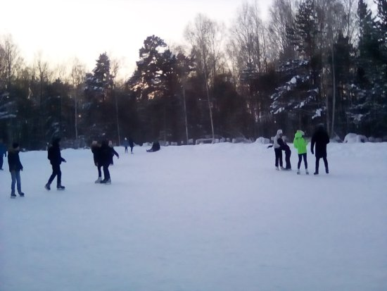Ice Skating Rink in Akademgorodok