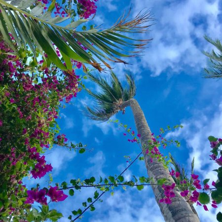 Casa na Praia: photo3.jpg