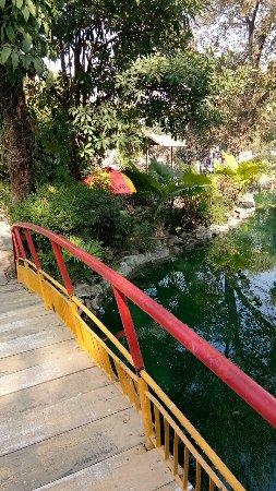 Best Western Resort Country Club: IMG_20171224_131437022_large.jpg
