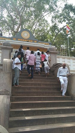 Jaya Sri Maha Bodhi: IMG_20171224_111614_large.jpg