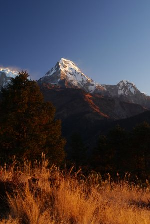 Nepal Trekkers: Annapurna South from Poon Hill