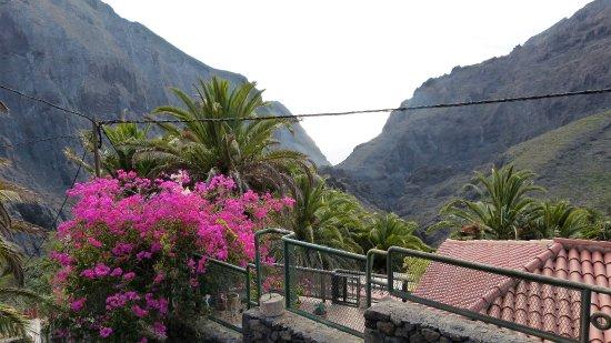 Terrassen  Kleurrijke terrassen - Picture of Masca Valley, Tenerife - TripAdvisor