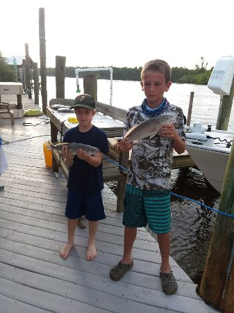 Everglades fishing charters everglades city 2018 ce for Everglades fishing guide