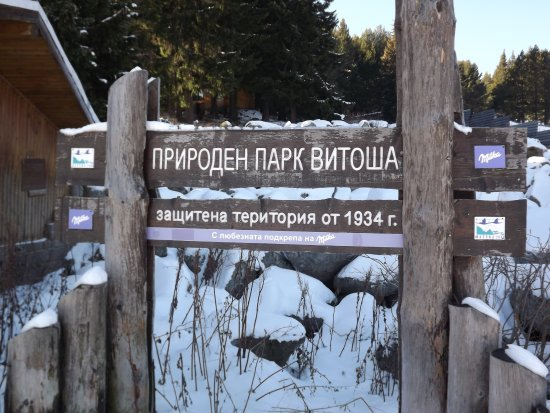 Vitosha Mountain: welcome at the top of the mountain