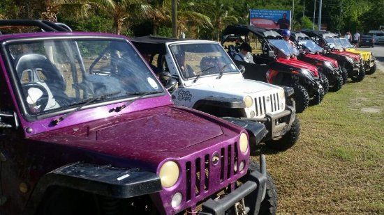 automatic and manual buggies are available for salty dogs rentals rh tripadvisor com Are NASCAR's Manual or Automatic manual vs automatic transmission for off roading