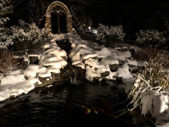Chester Heights, PA: Koi pond