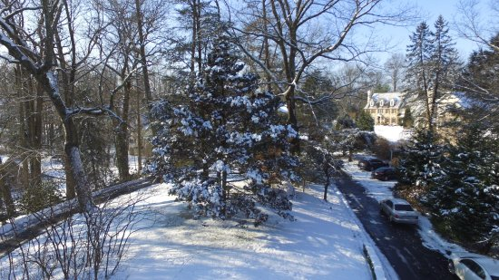 Chester Heights, Pensilvania: View from front of B&B