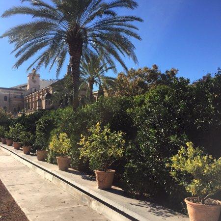 Foto de jard n de las hesp rides valencia jard n de las for Jardin de las hesperides valencia