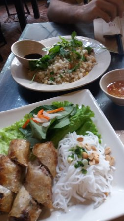 Spring rolls and seafood fried rice