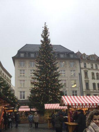 Markt: Zentraler Weihnachtsbaum