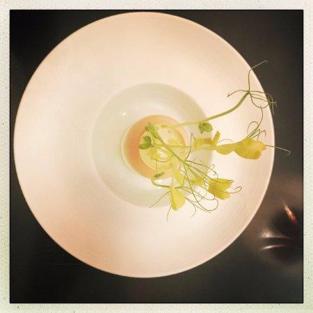 Goosefoot: first dish