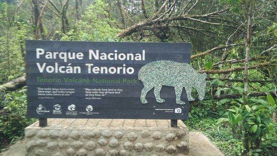Tenorio Volcano National Park, Costa Rica: IMG_20171223_112312_large.jpg