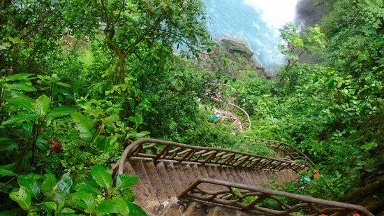 Tenorio Volcano National Park, Kosta Rika: DSC01590_large.jpg