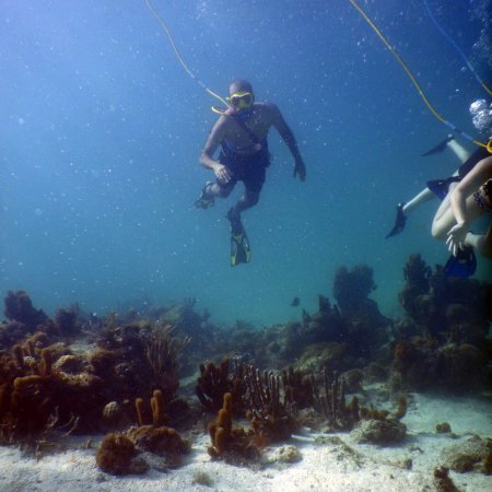 SNUBA Turks and Caicos: photo1.jpg