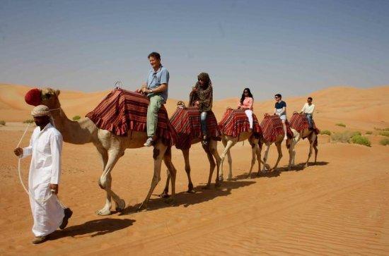 Morning Camel Trekking Safari fra...