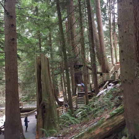 نورث فانكوفر, كندا: photo4.jpg